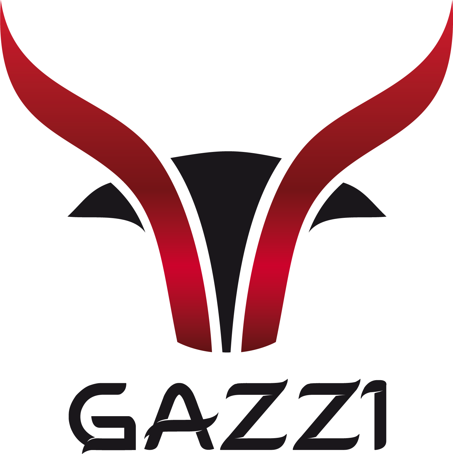 GAZZI - Unique Leather Accessories